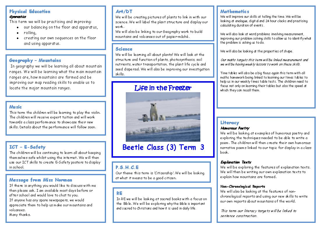 2013-14 Class 3 (Beetle) Topic Web Term 3